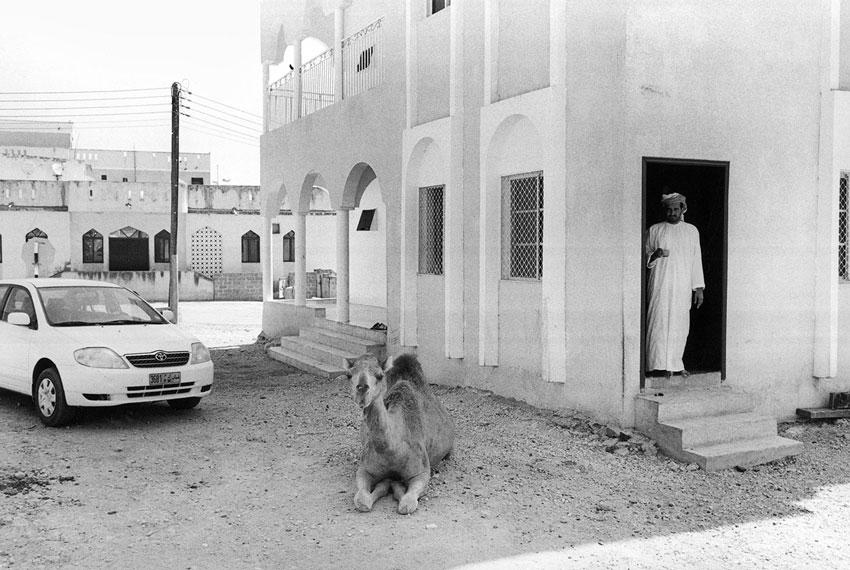 Dalkut, Dhofar, Oman, 2006; photograph